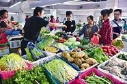 上周山东蔬菜价格小幅上涨,黄瓜涨幅最高43.7%
