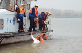 济宁市港航局港航工程处招聘工作人员 部分岗位急缺