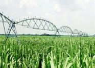 潍坊计划四年内新建高效节水工程面积达58万亩以上
