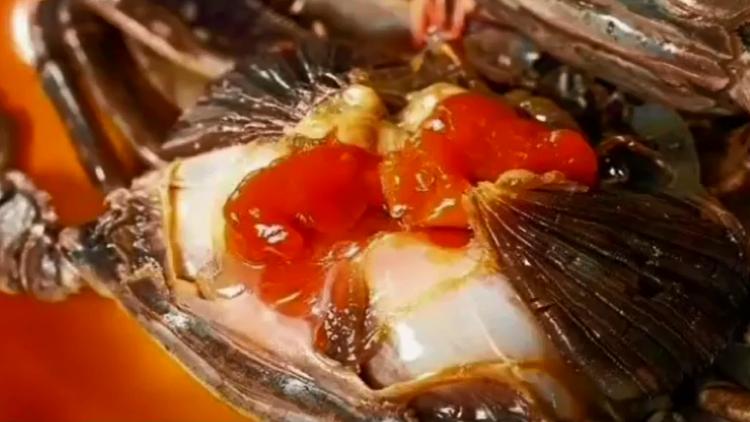 """螃蟹里发现粉红色""""寄生虫""""?专家:近亲,煮熟了吃没问题"""