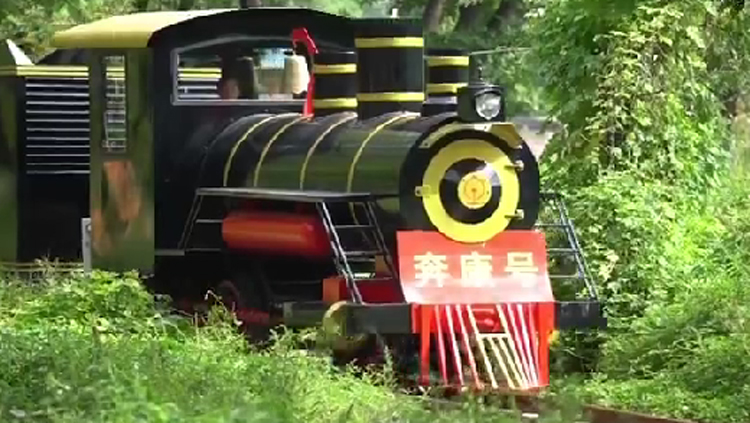 淄博村民凑钱买小火车发展特色游 营业仨月一票难求