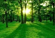 山东出台环保约谈办法 6种环保履职不力情形市领导将被约谈