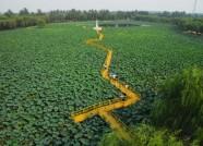 潍坊举办生态农业培训班 专家手把手教技术