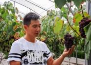 """潍坊百名""""新农人""""参加农业职业经理人培训 培训课程丰富实用"""