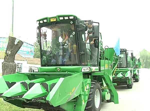 齐河:大型玉米收割机增至3000台 秋收基本实现机械化