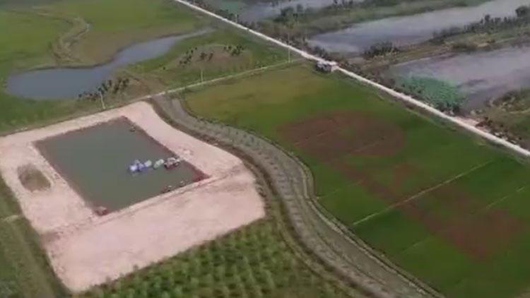山东推广稻渔综合种养模式 实现一水两用、一田多收