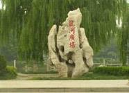 新兴产业传统产业并举 昌邑柳疃镇在产业强市中率先作为