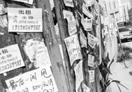 济南男子雇佣他人街头张贴小广告谎称办证骗钱财 已被刑拘