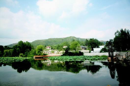 """济宁泗水入选首批省级""""城市双修""""和城市设计试点城市名单"""