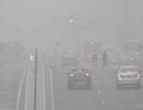 海丽气象吧|泰安今晨发布大雾黄色预警 局部地区能见度小于200米