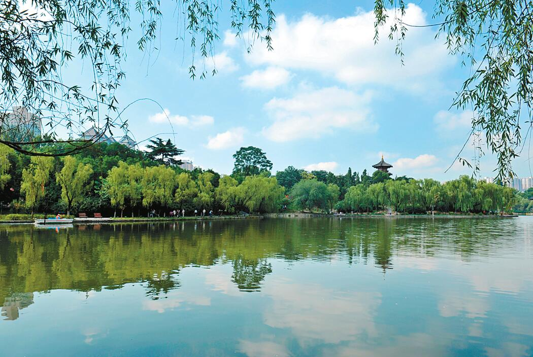 枣庄8月份各区(市)
