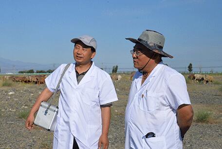 山东援疆医者陈圣国:为新疆人民筑起健康的安全屏障