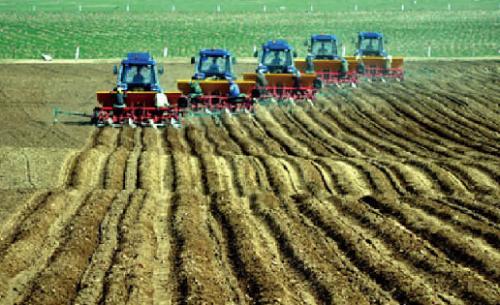 德州秋收近尾声 小麦播种近三成全部实现机械化