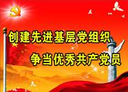 """滨州博兴县曹王镇深入落实基层党支部""""巡长制""""跑出加速度"""