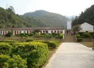 一张蓝图绘到底!潍坊临朐打造精品村落建设美丽乡村