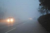 注意!受大雾天气影响 山东这些高速收费站临时封闭