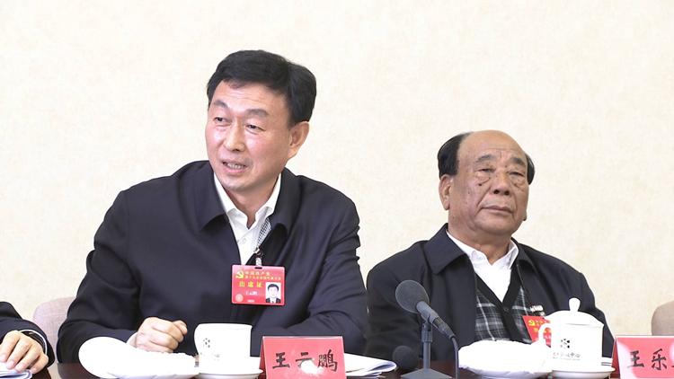 对话党代表丨王云鹏:以前是我们去招商 现在是别人来招商