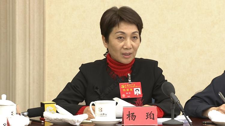 对话党代表丨杨珀:优秀传统文化被重视被保护 文艺的春天来了
