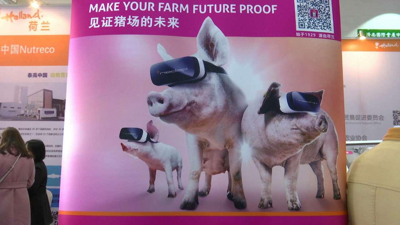 高科技设备亮相山东畜牧业博览会 可自动控制鸡舍温度