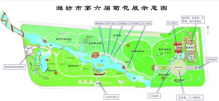 【潍坊】第六届菊花展25日将开展