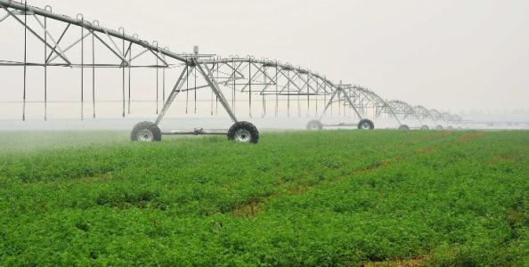 德州以优良生态环境打造放心农场 优质农产品认证665万亩