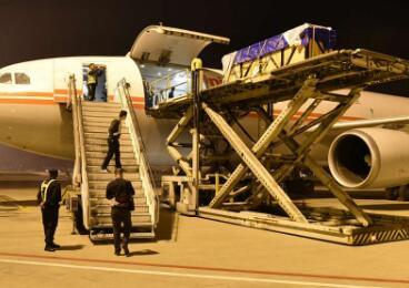 """白鲸""""空中迁徙""""!青岛机场顺利完成两头白鲸包机运输保障"""