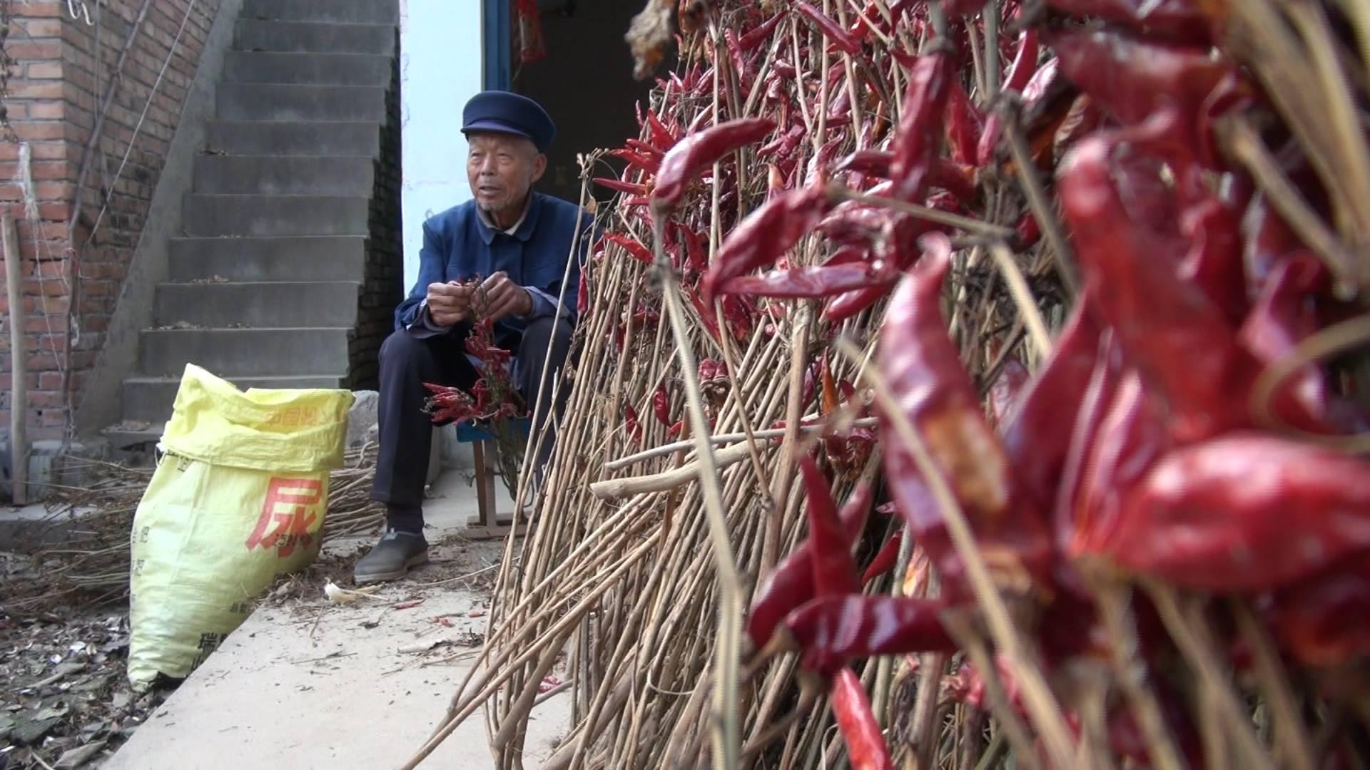 少吃啥、多吃啥?济宁96岁老人47秒讲述长寿秘诀
