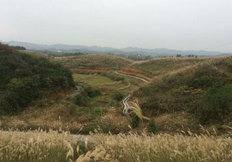 枣庄山亭今明两年引导社会资金整治39个土地项目