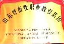 潍坊一高校牵头组建教育集团获评山东省骨干职业教育集团