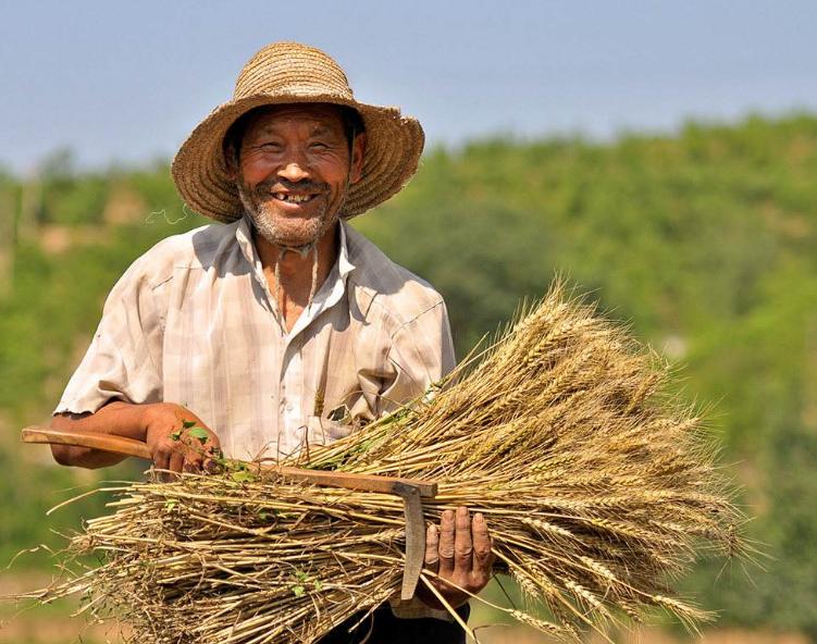 国家将出新规,山东5056万农民身价要涨!想回农村吗