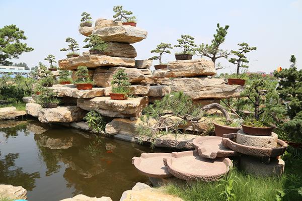 中国(临沂)花木博览城 着力打造国际花卉特色小镇
