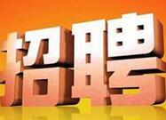 山东省属事业单位又叒叒招聘啦,这两所学校共招聘77名教师
