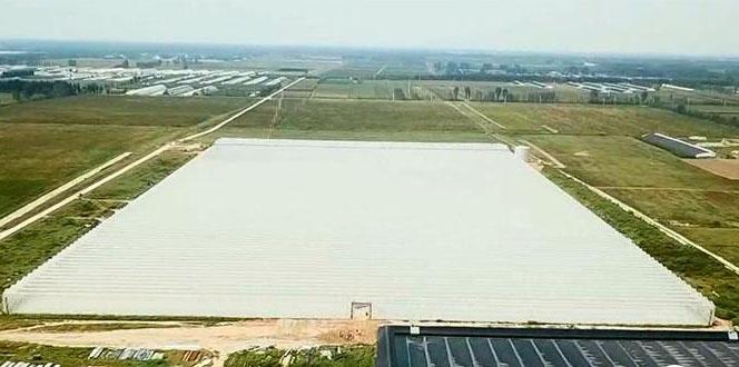 """德州首个智慧农业大棚建成启用 """"放心农场""""走向高端"""