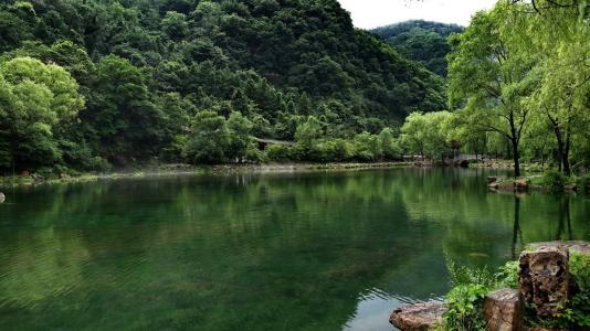 国家级自然保护区监督检查专项行动巡查组来山东开展巡查工作
