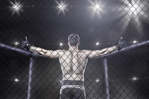 """淄博""""城市杯""""青少年拳击邀请赛15日揭幕 将免费开放"""