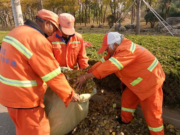 临沂环卫集团3000名环卫工人清扫落叶确保道路整洁