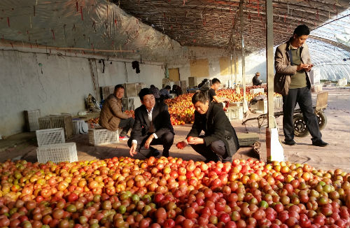 农业银行日照分行金融服务进企业 累计发放专项贷款3100余万