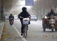 """海丽气象吧丨潍坊气温将迎来""""过山车""""式下降 最低仅2℃"""