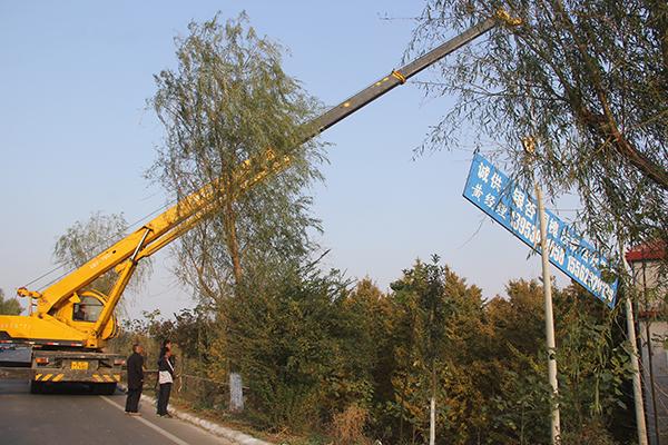 临沂:郯城新村102处违规广告牌全部被清理