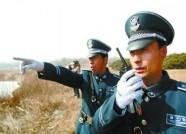 """潍坊开展""""利剑行动"""" 严打各类涉林违法犯罪"""