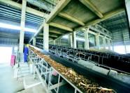 潍坊高新区改造57个非直供热站 总入网面积达1900万平方米