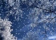 海丽气象吧 | 冷!山东气温跌至零下,这个城市还会下雪