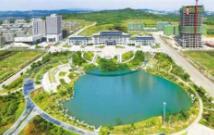 临港区前三季度实现高新技术产业产值同比增长35%