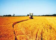 """临朐柳山镇创新推行""""434""""土地流转新模式 激发农业发展新动能"""