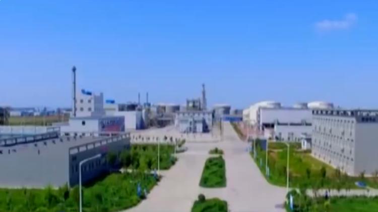 总投资300亿!新疆生产建设兵团到山东推介重点项目