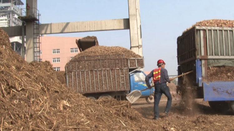 155秒|废弃秸秆成了香饽饽!新型循环经济助力郓城农民脱贫致富
