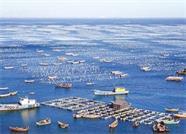 威海市制定《专项资金管理办法》 促进海洋经济发展
