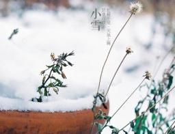 """海丽气象吧丨今日小雪无雪别""""嘚瑟"""" 0℃还得持续"""