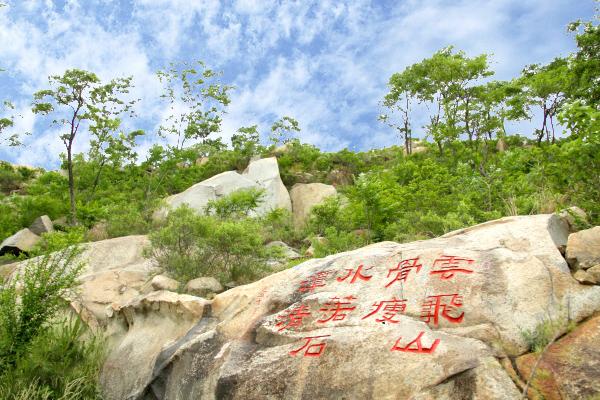 2017年全国综合竞争力百强县(市)公布 滕州上榜