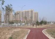"""再添一处休闲娱乐胜地!潍坊""""东城体育公园""""本月底竣工"""